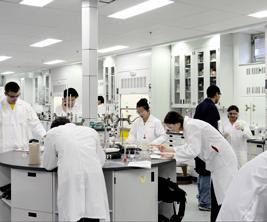 Université McGill : étudiants travaillent dans un laboratoire de chimie.