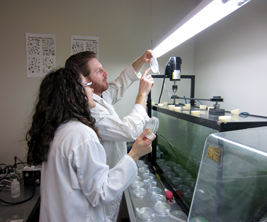 Students study algae biomass
