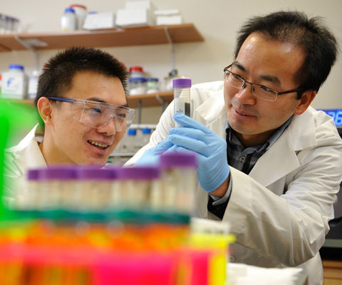 Two Asian researchers observing test tubes in a lab.