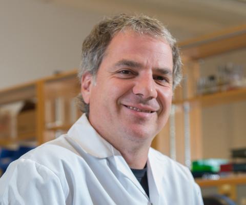 Gary Kobinger, directeur, CHUL et Centre de recherche en infectiologie de l'Université Laval.
