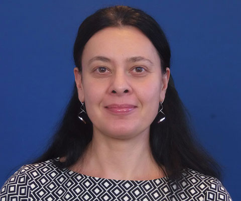Andreea Strachinescu, Head of Unit New Energy Technologies and Innovation, European Commission.