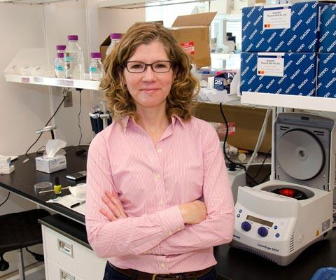 Julie Lefebvre, innovator