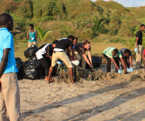 Canadians and Africans pulling weeds on a shoreline.