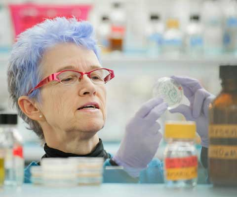 Une chercheuse avec des cheveux teints à couleur de lilas travaille dans dans un laboratoire.