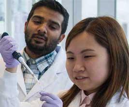 Une jeune chercheuse et un chercheur travaillent dans un laboratoire universitaire.