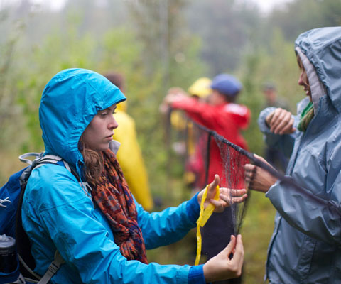 A female student wearing a blue rain jacket conducts environmental research outdoors in the rain.