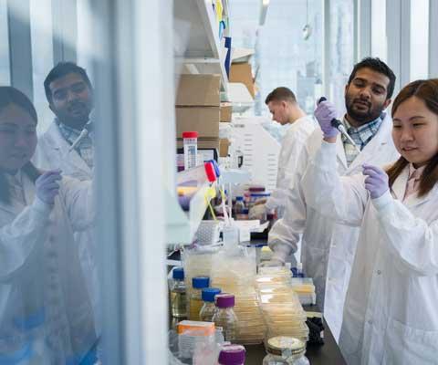 Un jeune chercheur et une jeune chercheuse travaillent dans un laboratoire.