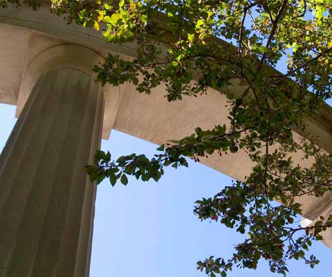 Column of historic campus building near a tree.