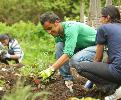 Students planting in a garden.