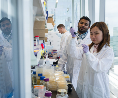 Two university students wearing white lab coats and purple latex gloves conduct their research in a laboratory.